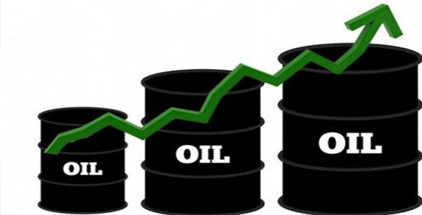 رشد هفتگی نفت باوجود بحران کرونای هند - مهرشید نیرو