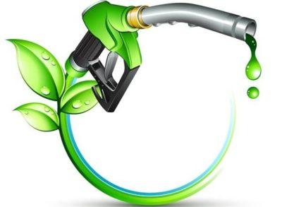 ۲ پروژه ملی برای توسعه تولید سوخت زیستی در کشور